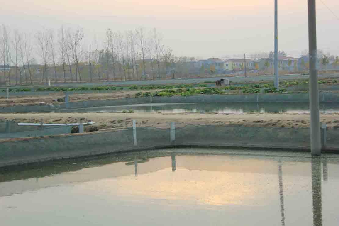 水泥池排水口设计图
