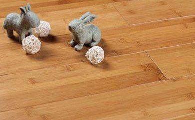 北京市圣象竹地板安装竹地板打蜡公司