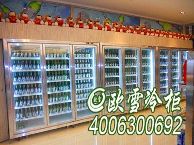 湘潭多门冰柜那里最便宜