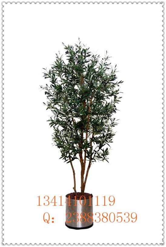 橄榄树前台摆设仿真橄榄树室内大厅布置假树