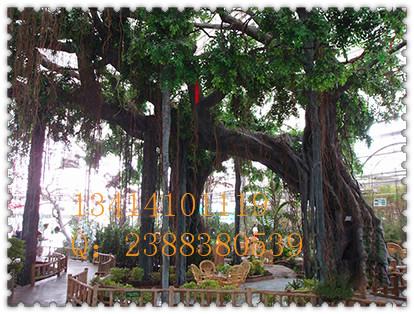 园林庭院装饰仿真树榕树高大人造仿真榕树高级会所大