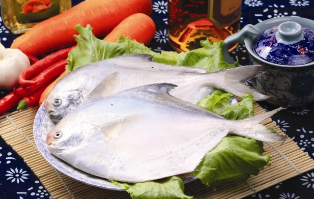 银鲳鱼 海鱼 大连海鲜 水产批发 鲳鱼价格