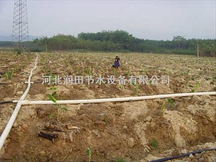 专业微喷带生产线 价格从优质量一流-河北润田节水设备有限公司推广部