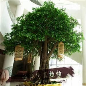 室内店铺装饰仿真榕树,景观榕树造型订做,各种仿真植物订做,仿真大树