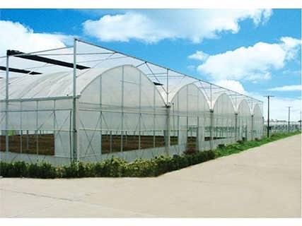 连栋薄膜温室大棚设计