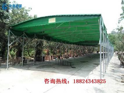 树叶与树枝手工帐篷