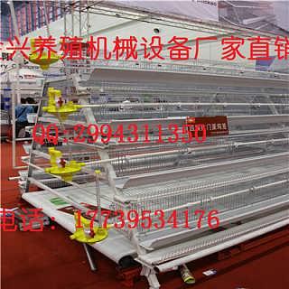 金兴厂家直销镀锌鸡笼及养鸡设备