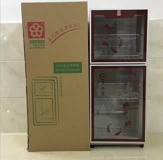 专业生产批发会销评点消毒柜广州樱花保洁碗柜双门立式柜