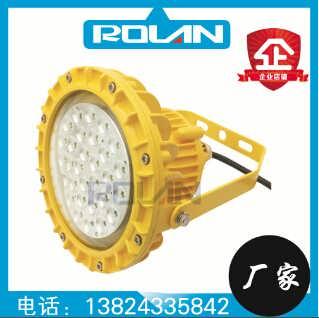 广州服装厂30W40W50WLED防爆灯