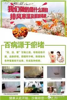 沙棘排湿项目加盟大品牌-延寿县鼎鑫生物工程有限公司