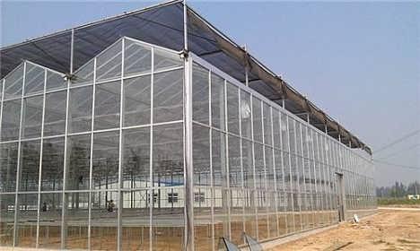 钱眼首页 商机库 农林牧渔 农业技术工程 > 钢结构玻璃温室大棚