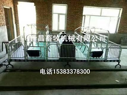 双体母猪产床河北沧州养猪设备厂家