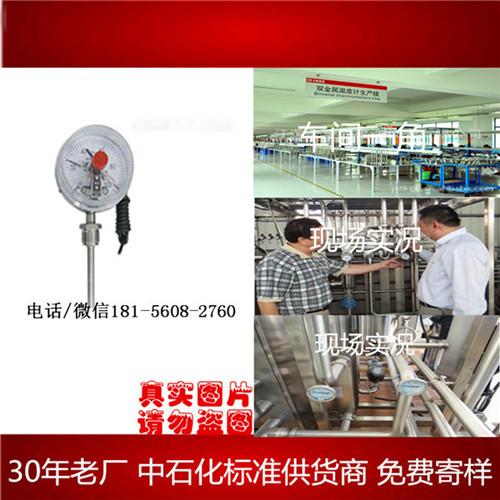 江西wss-500长度和型号均可定制-安徽迪克森自动化仪表有限公司