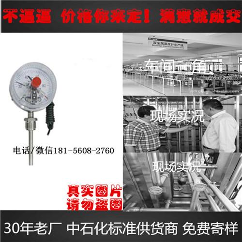 wssp-511温度计生产厂家定制温度计-安徽迪克森自动化仪表有限公司