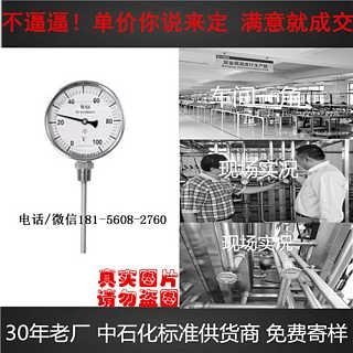 汝州wssx-484b0-300度温度计-安徽迪克森自动化仪表有限公司
