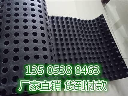 车库塑料排水板,种植阻根排水板-泰安市旺高建材有限公司销售一部