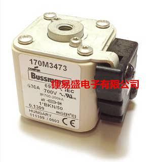Bussmann熔断器170M5008