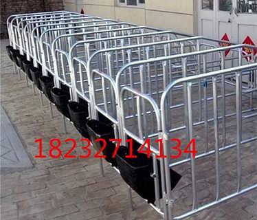 供应养殖设备母猪限位栏使用安装介绍