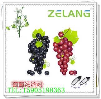 红酒提取物,红酒多酚,白藜芦醇-江苏芝能生物科技有限公司(泽朗集团子公司)