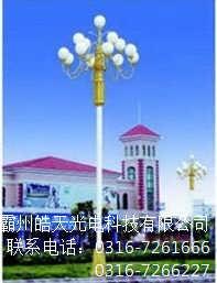 中华灯厂_葫芦岛中华灯厂家
