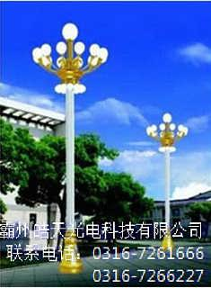 中华灯厂_阜新中华灯厂家