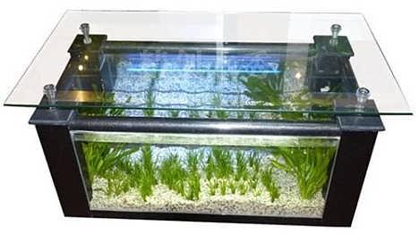 柜式鱼缸招商加盟-山东森贝尔水族景观制作有限公司