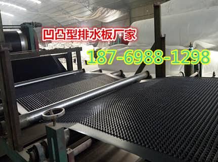 江苏4公分滤水板车库阻根排水板-泰安市旺高建材有限公司_塑料排水板