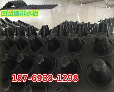 广州40透水板凹凸型排蓄水板-泰安市旺高建材有限公司_塑料排水板