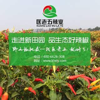 2017干辣椒价格 咨询匡老五辣业