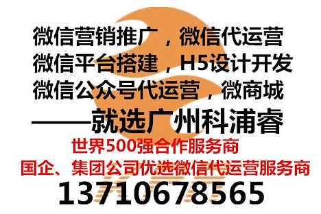 惠州新媒体运营实战经验丰富,资深团队微信托管公司