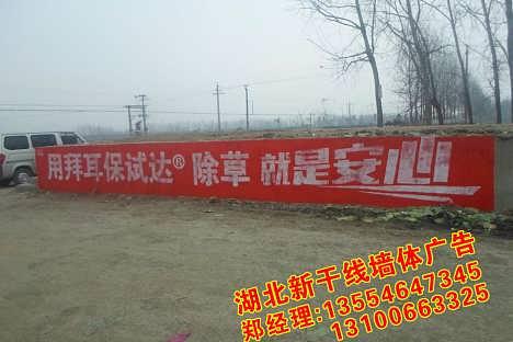 常德户外广告安装农村楼体写字广告专业公司-湖北新干线广告有限责任公司