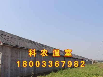 河南智能温室大棚建设厂家 价格 报价