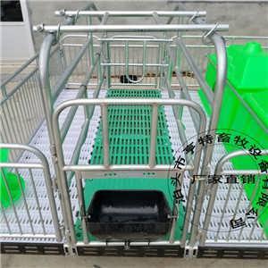 养猪设备母猪双体产床复合漏粪板猪用设备价格