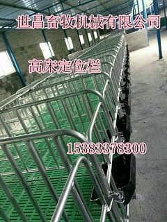 供应养猪设备母猪保胎定位栏一套多少钱