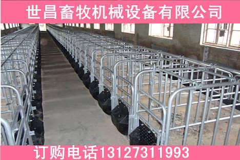 固定地面猪用定位栏合理设计母猪限位栏连装