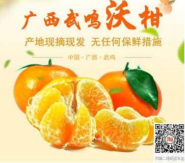 年货水果,抢手货--广西武鸣沃柑-广西山山秀果电子商务有限公司