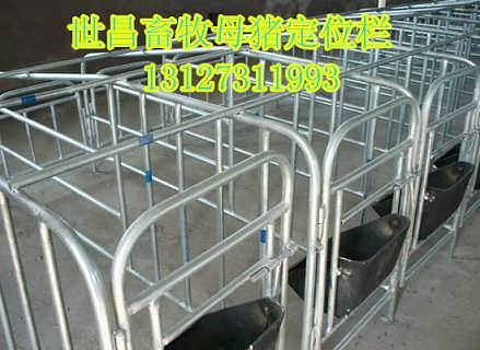 猪用新型定位栏设计安装母猪限位栏价格合理