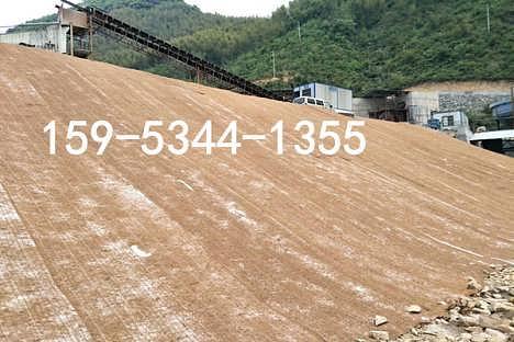 河道护坡植物纤维椰丝毯的铺设方法