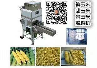 带链条式输送带玉米脱粒机-武汉锐利食品机械有限公司