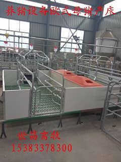 质量可靠离地母猪产床分娩和哺乳仔猪而焊接环保型-泊头市世昌畜牧机械有限公司.