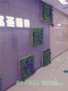 仿真花利润怎么样-历城区绿立方仿真绿植销售中心