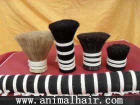 厂家供应拉力强的自刷原料马尾毛,马鬃毛,马毛