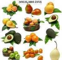 越南进口水果报关流程