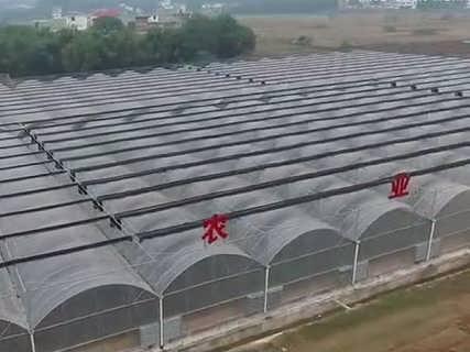 三江智能温室大棚