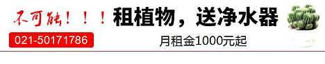 北京绿化租赁公司