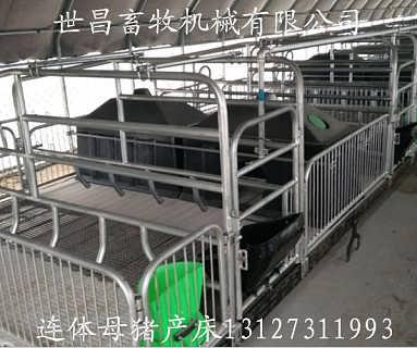 寻自制款猪用产床新建猪舍规划安装连体母猪分娩产床-泊头市世昌畜牧机械有限责任公司