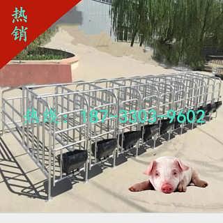 养猪设备母猪限位栏定位栏定做