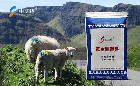 市场上母羊预混料出售价格