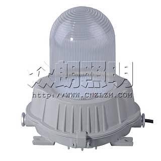 防眩泛光灯HPS光源 ZY8600-N70平台灯 220V