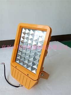 RDB98-MZ型防爆免维护节能灯(LED) 防爆路灯led-宜兴市华宏电器制造有限公司LED防爆视孔灯